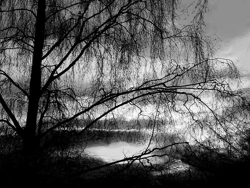 bm_1801_Monika_v.Wegerer